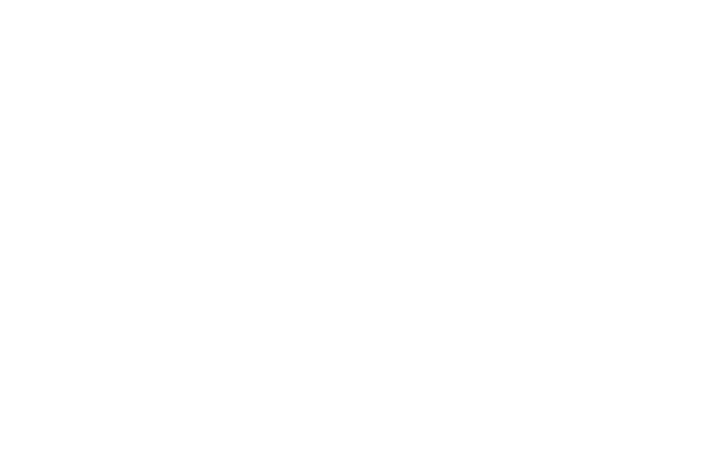 PFCU Insurance Services Logo White